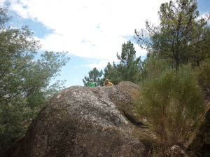 Pines and boulders in Castelo Branco