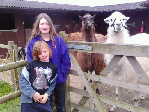 children with llamas