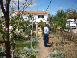 Village house for sale, Remax Castelo Branco, Portugal