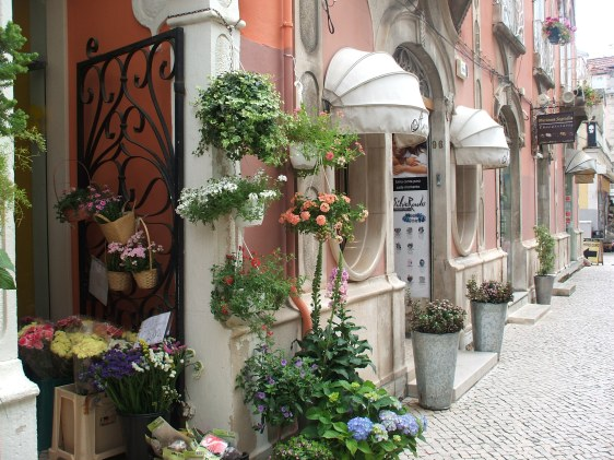 Caldas da Rainha, places to visit, property for sale Silver Coast, boutiques, travel portugal