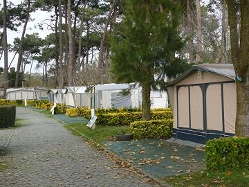 campsite silver coast, tents