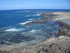 reef on Selvagem Pequena, Savage Islands,  Madeira
